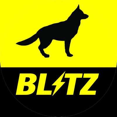 blitz_driver