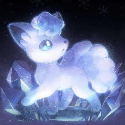 ICEFOX13